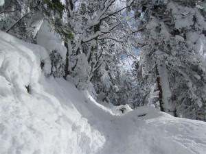 Zima in sneg