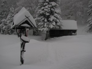 Zimska idila v marcu